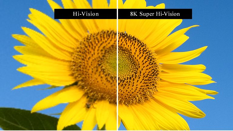 Full HD vs 8K